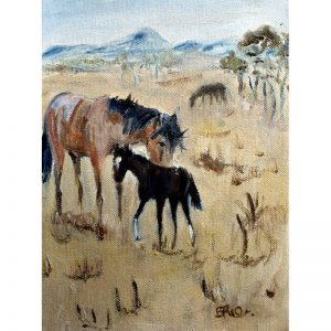 Brumby and Foal 1