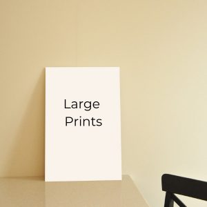 Large Prints A3